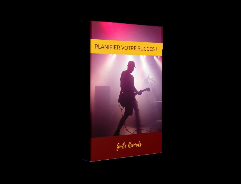 planifier son succès vivre de la musique